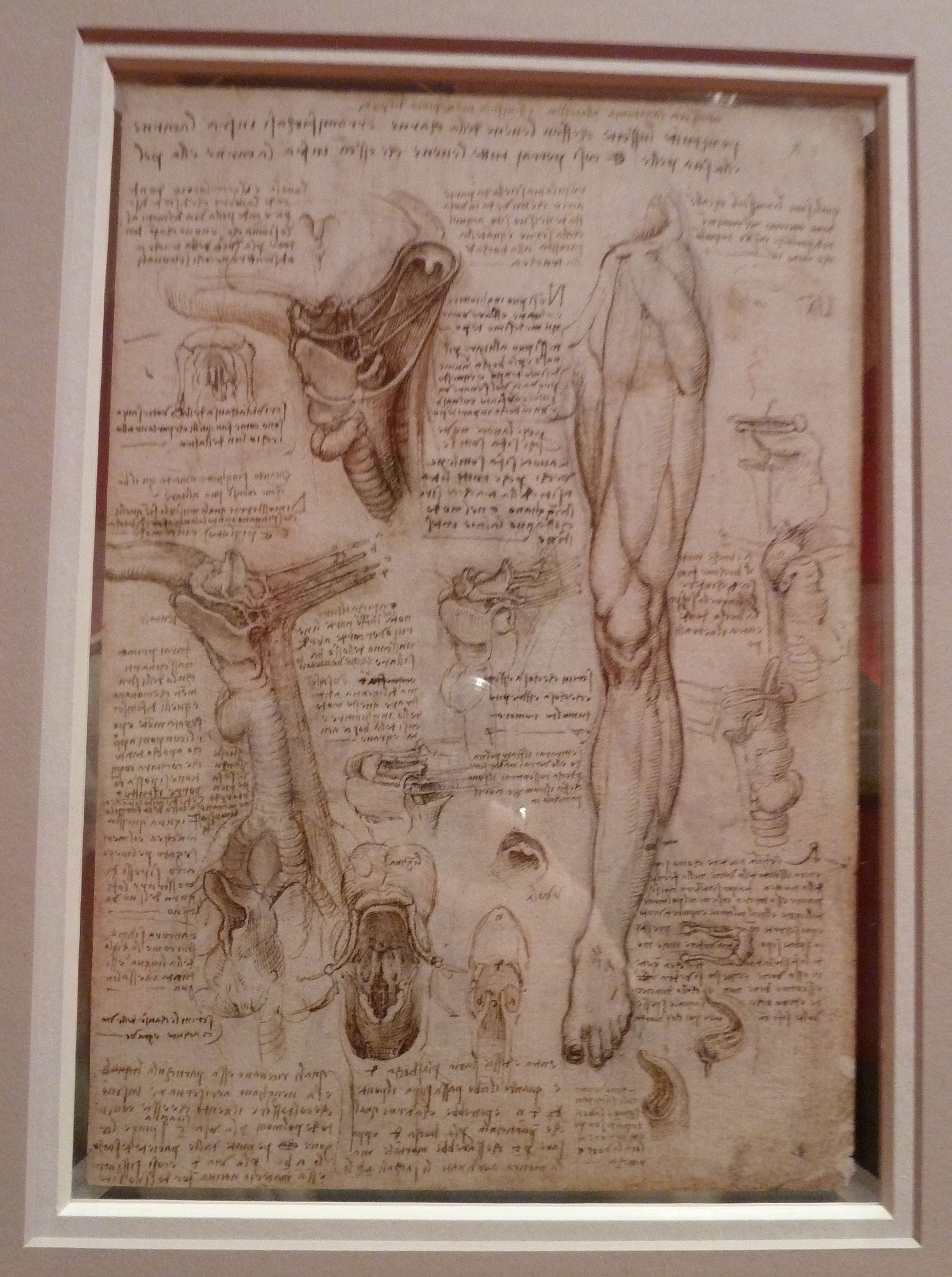 Leonardo Da Vinci ...  Leonardo Da Vinci Resume